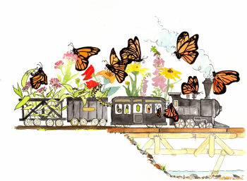 Butterfly Train from TRAIN'S SUMMER by Sarah Steinberg - Dummy available